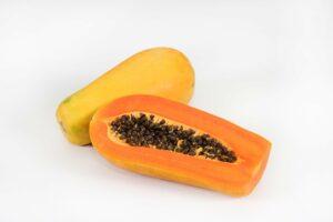 digunakan sebagai contoh rpph tanaman buah pepaya