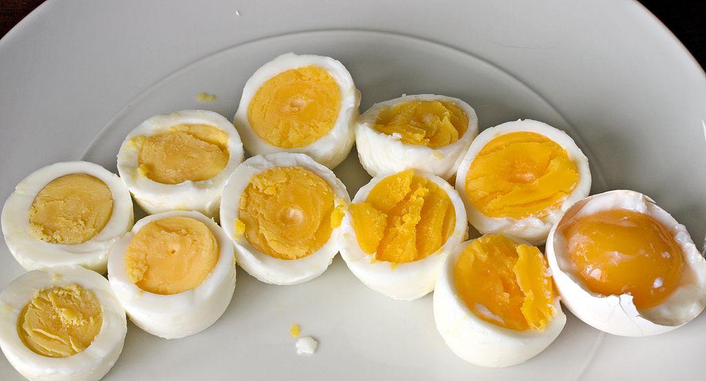 ilustrasi contoh rpph tema kebutuhanku subtema lauk pauk telur